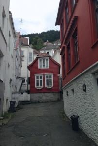 3_Bergen (3)