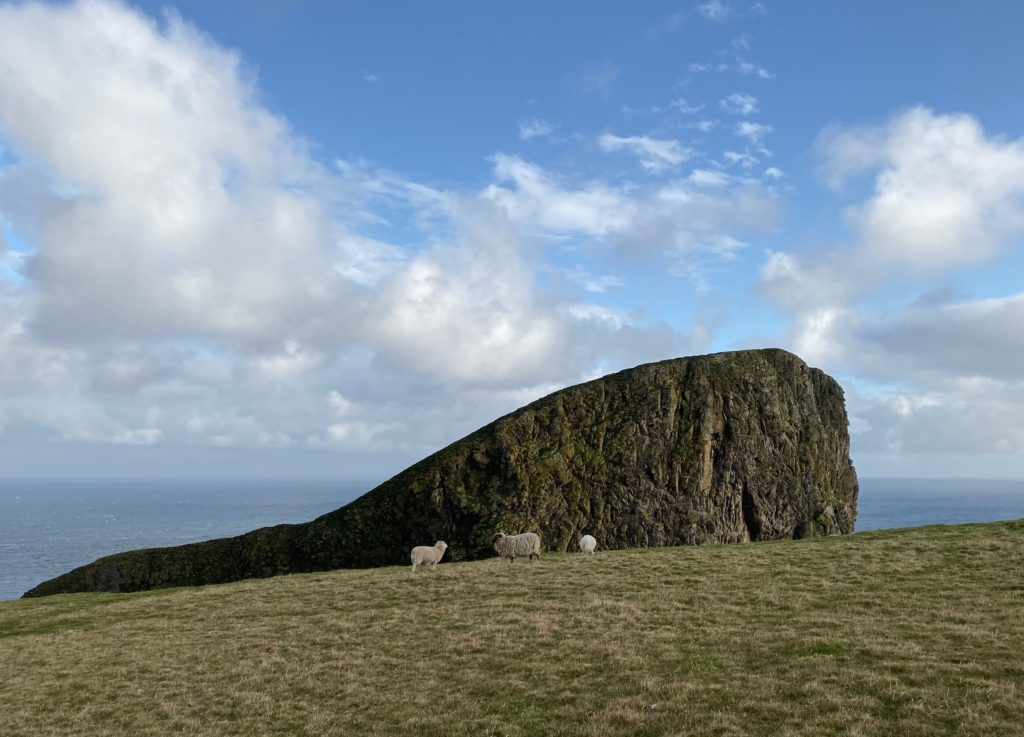 Sheep stand in front of majestic Sheep Rock
